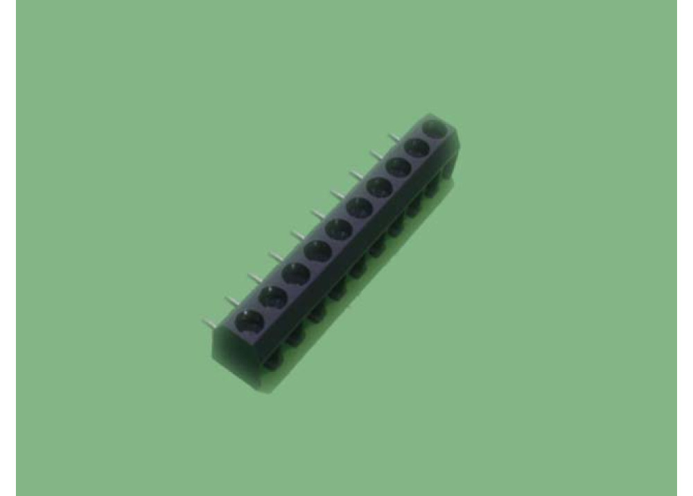 Terminal block PCB R 10P