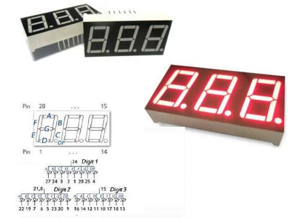 LED DISPLAY 7SEG 0.56+3R Common Anode