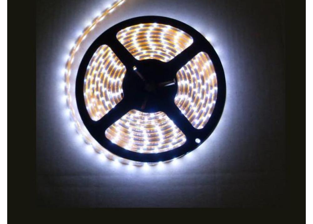 WHITE Light StripLED Roll 3528-30 LED 5M