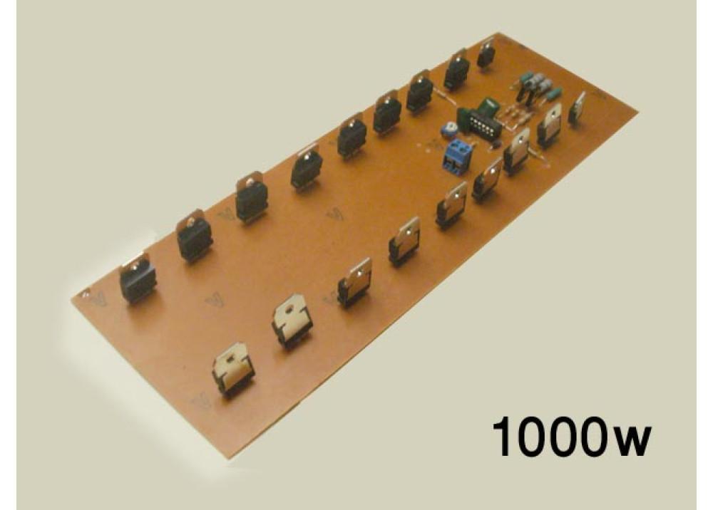 INVERTER KIT W/T 12V 24V 220V 1000W